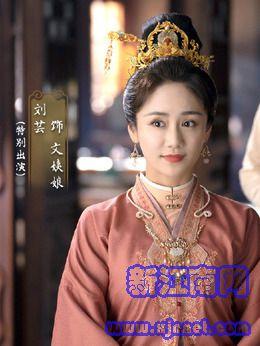 文姨娘(刘芸饰演)